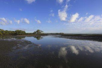 Australie – Nudgee beach (Brisbane) et Woorim beach (Sunshine Coast)