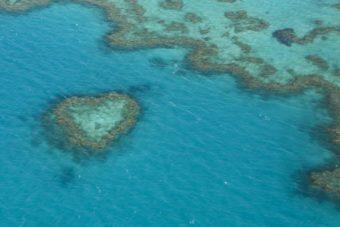 Australie – Survol de la Grande Barrière de Corail et des îles Whitsundays
